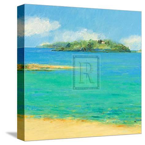 Aquamarine II-Hazel Barker-Stretched Canvas Print