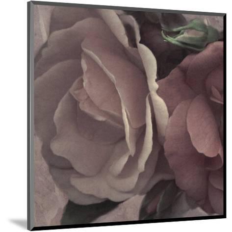 Parfum I-S^ G^ Rose-Mounted Art Print