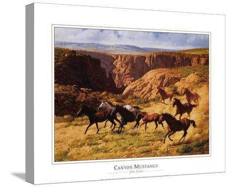 Canyon Mustangs-John Leone-Stretched Canvas Print