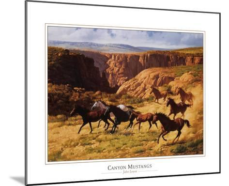 Canyon Mustangs-John Leone-Mounted Art Print