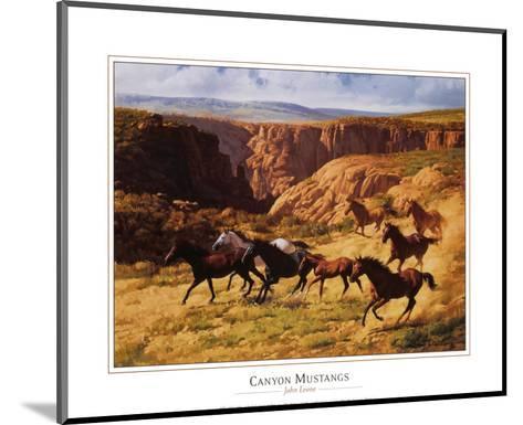 Canyon Mustangs-John Leone-Mounted Art Print