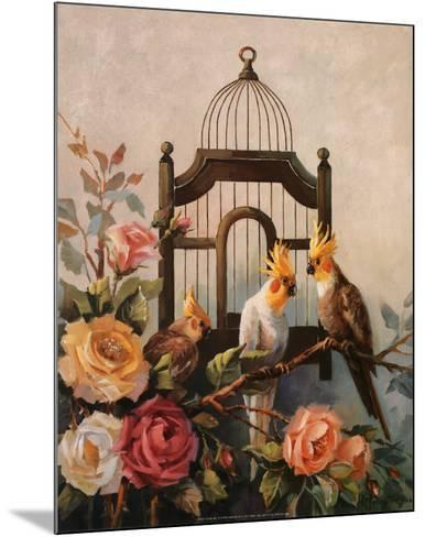 Cockatiel and Roses-Maxine Johnston-Mounted Art Print