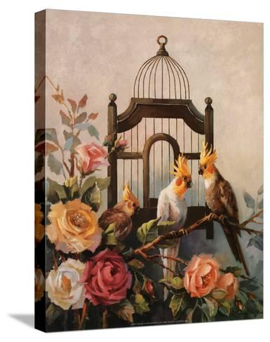 Cockatiel and Roses-Maxine Johnston-Stretched Canvas Print