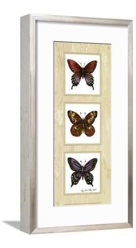 Bright Butterflies-Peggy Thatch Sibley-Framed Art Print