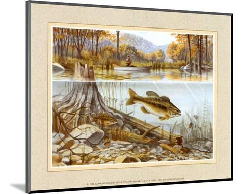 Trout Under Water--Mounted Art Print
