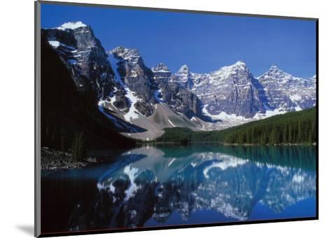 Goals: Dolphins-Craig Tuttle-Mounted Art Print