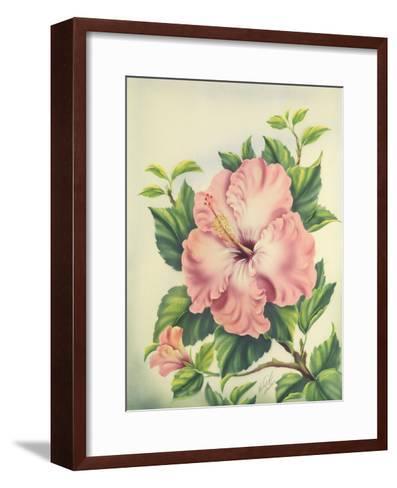 Hawaiian Pink Hibiscus, c.1940s-Ted Mundorff-Framed Art Print