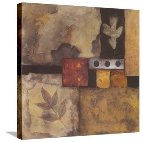 Autumn Abstract I-Norm Olson-Stretched Canvas Print