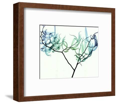 Willow-Steven N^ Meyers-Framed Art Print