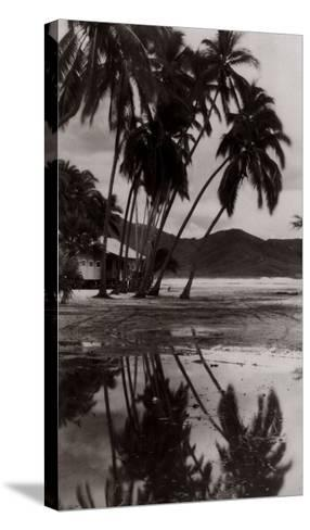 Coco Palms, Acapulco, 1932--Stretched Canvas Print