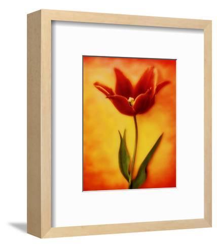 Tulip I-Christine Zalewski-Framed Art Print