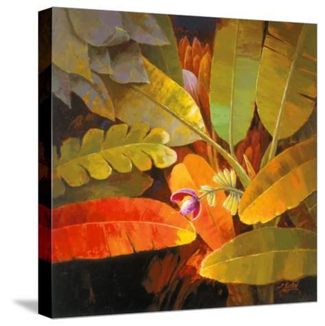 Tropical Leaves II-June K^ An-Stretched Canvas Print