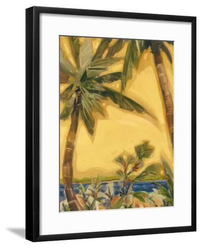 Bahama Splendor II-Jeff Surret-Framed Art Print