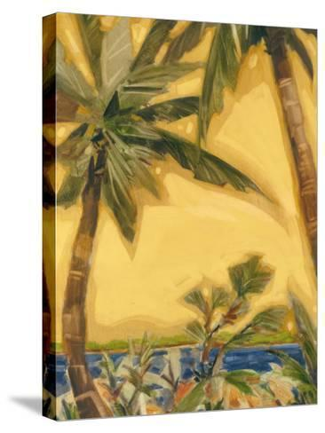 Bahama Splendor II-Jeff Surret-Stretched Canvas Print