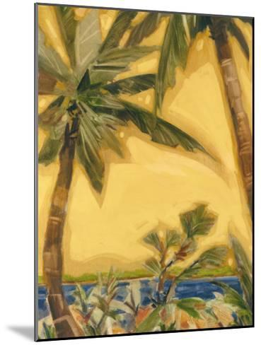 Bahama Splendor II-Jeff Surret-Mounted Art Print