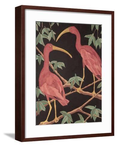 Scarlet Ibis II-Dan Goad-Framed Art Print