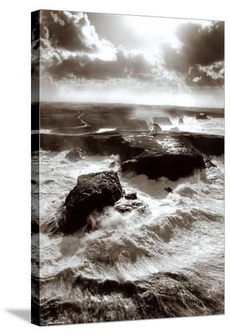 Lumiere sur les Poulains-Guillaume Plisson-Stretched Canvas Print