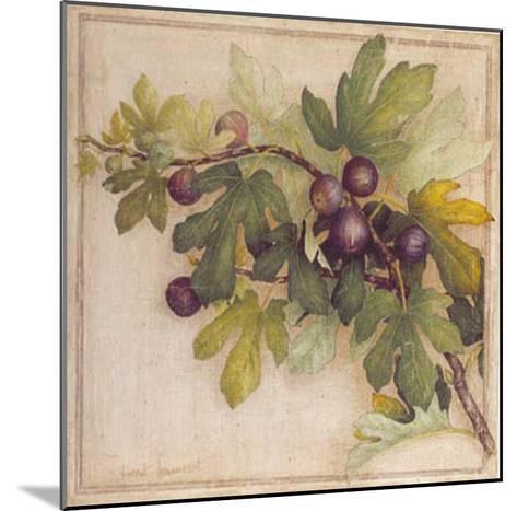 Branche de Figuier II-Vincent Jeannerot-Mounted Art Print