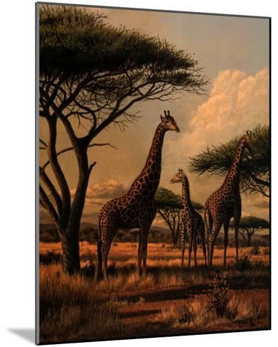 Giraffe Family-Clive Kay-Mounted Art Print