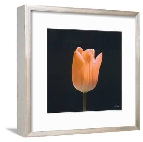Tulip-Mitch Ostapchuk-Framed Art Print