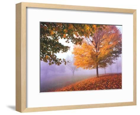 Autumn Mist-Mike Jones-Framed Art Print