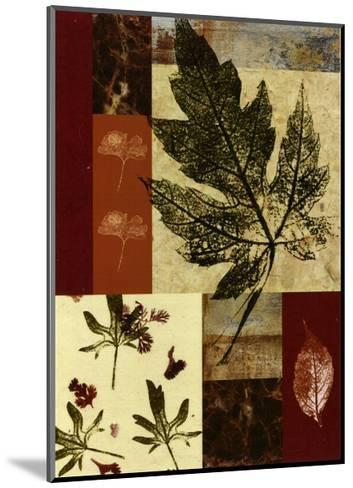 Leaf Print Collage III--Mounted Art Print