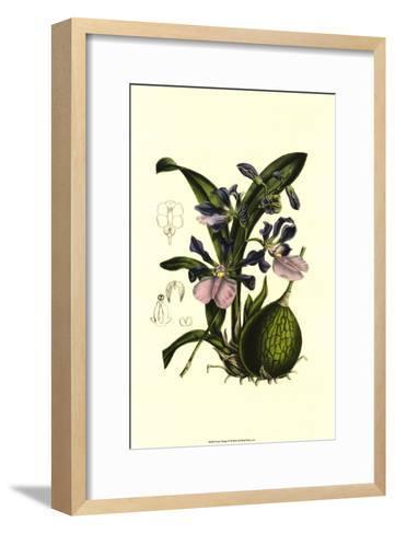 Exotic Foliage IV--Framed Art Print