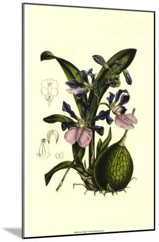 Exotic Foliage IV--Mounted Art Print