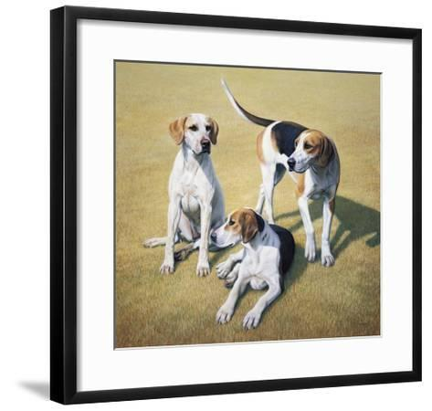 Cotswold Foxhounds-Gary Stinton-Framed Art Print