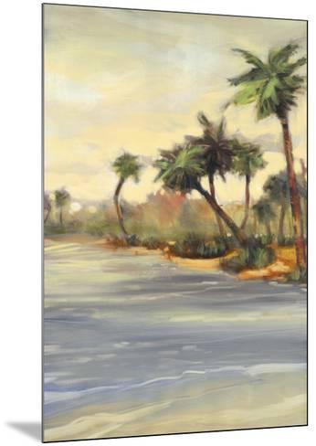 Caribbean Shores I-Jeff Surret-Mounted Art Print