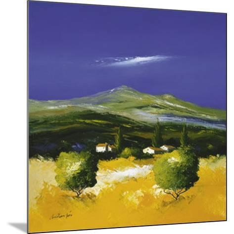 Whistful Landscape II-Christian Soto-Mounted Art Print