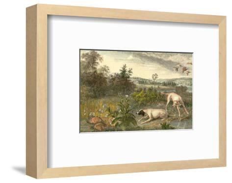 Folle et Mitte--Framed Art Print