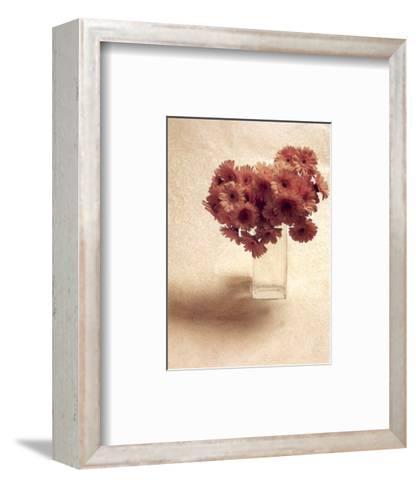 Cut Flowers IV-Vincenzo Ferrato-Framed Art Print