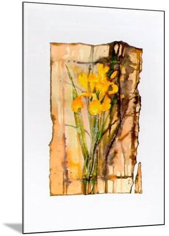Light and Shade II-R^ Meyfeld-Mounted Art Print