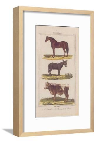 Cheval--Framed Art Print