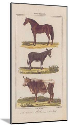 Cheval--Mounted Art Print