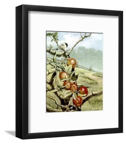 Red Orchard-Alan Sakhavarz-Framed Art Print