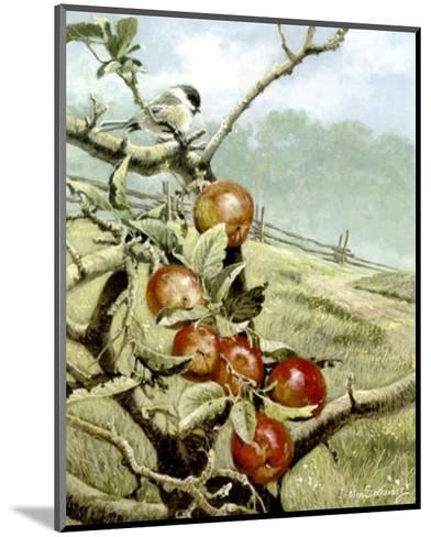 Red Orchard-Alan Sakhavarz-Mounted Art Print