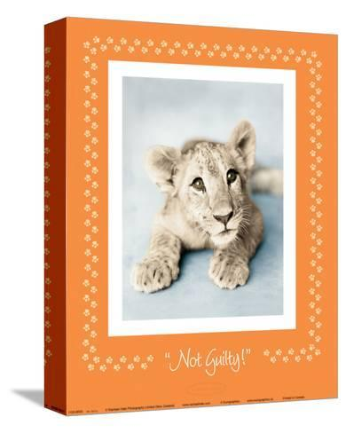 Not Guilty-Rachael Hale-Stretched Canvas Print