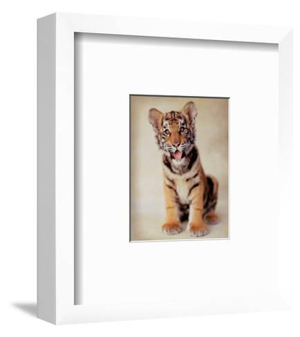 Tiger-ific-Rachael Hale-Framed Art Print