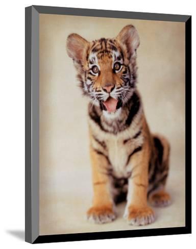 Tiger-ific-Rachael Hale-Mounted Art Print