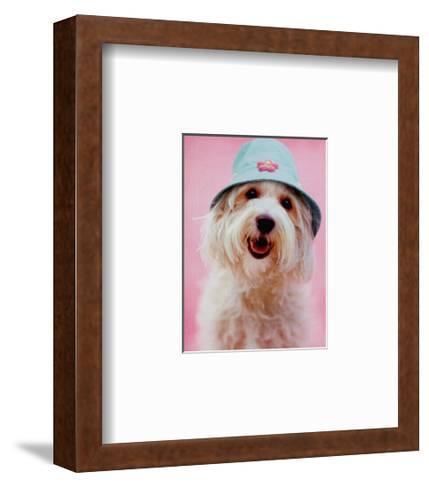 I'm a Spring-Rachael Hale-Framed Art Print