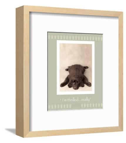 I'm Thrilled-Rachael Hale-Framed Art Print