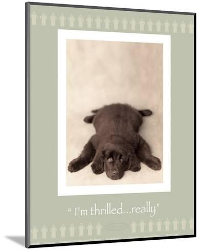 I'm Thrilled-Rachael Hale-Mounted Art Print