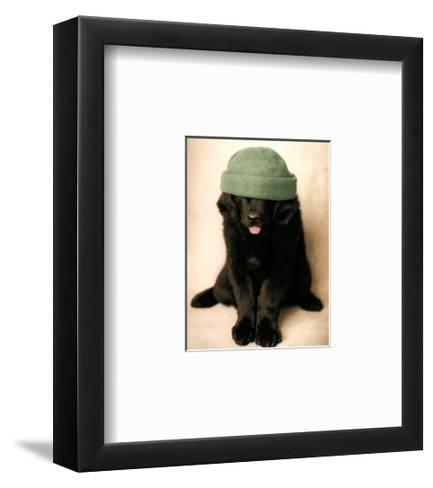 Can I Look Yet-Rachael Hale-Framed Art Print