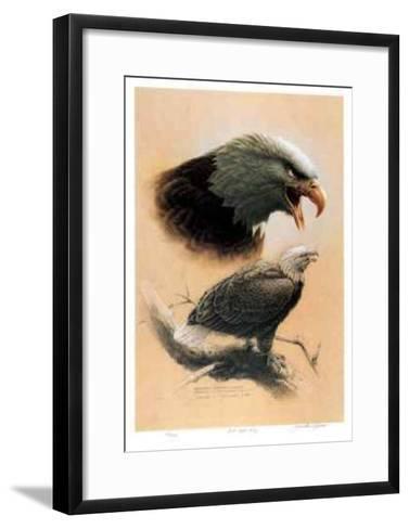 Bald Eagle Study-Michael Dumas-Framed Art Print