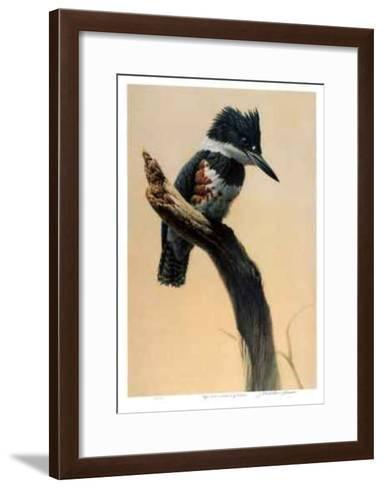 High Point - Belted King Fisher-Michael Dumas-Framed Art Print