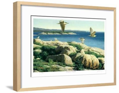 St. Lawrence Archipelago-Claudio D'Angelo-Framed Art Print