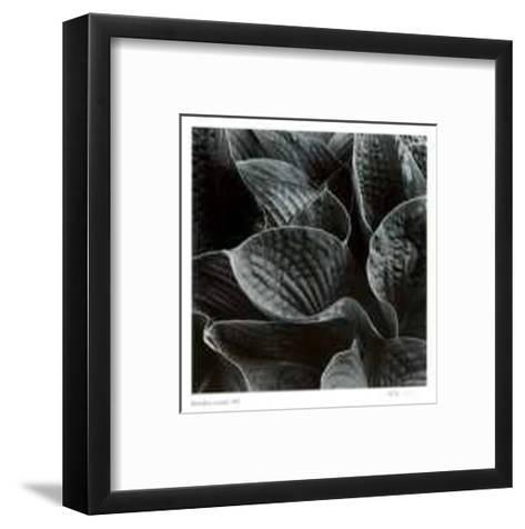 Untitled (leaves)-Morry Katz-Framed Art Print
