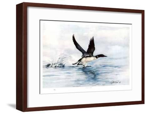 Common Loon-Robert Pow-Framed Art Print